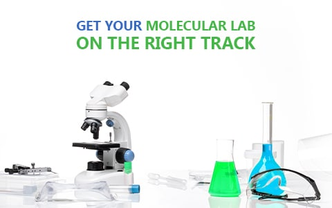 Making Slow Business Progress? Work Smarter & Get Your Molecular Lab on the Right Track